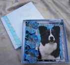 HAND MADE HAPPY BIRTHDAY KEEPSAKE CARD BOXED WITH BORDER COLLIE & BUTTERLIFES